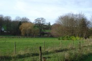 View towards stream from Holly Grove Farm