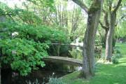 Bridge at Winterborne Zelston