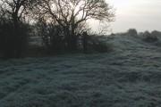 Ryhill Marsh