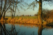 View from towpath of Shropshire Union Canal Montgomeryshire Branch