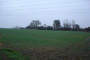 Petersham Farm