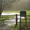 Ashford Hill Meadows