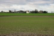 View across farmland to Black Pond Farm.
