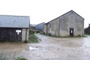 Potter's Hill Farm