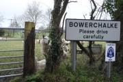 Bowerchalke sheep