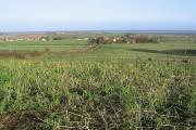Farmland at Fenwick