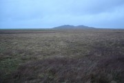 Grassy moorland near Barrapol