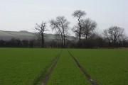 Farmland near Uffington