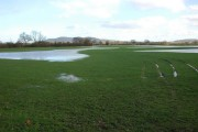 Flooded farmland at Waterloo