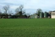 Elms Farm