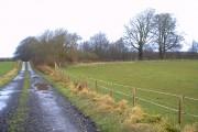 Ledston Park