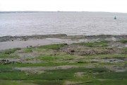 Sandstone shore near Bromborough