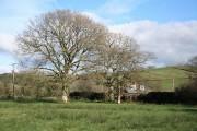 Bishop's Nympton: near Veraby