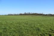 Park House Farmland