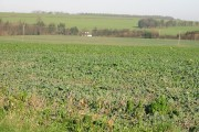 Open farmland near East Studdal