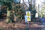 Woodland, Gibb's Lane, Bordon