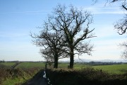 Broadwoodkelly: near Ingleigh Green