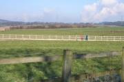 Cheshire Farmland near Lowerhall Farm