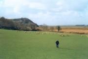 Pastureland and saltmarsh near Weobley Castle