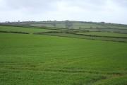 Sampford Courtenay: near Langmead Farm