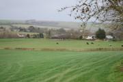 View towards Berwick St John