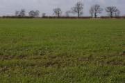 Farmland, Adstock