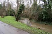 River Pinn after winter rain