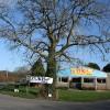 Winkleigh: Seckington Cross