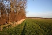 Farmland off North Scaffold Lane