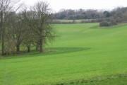 Open farmland near Swarling Manor Farm