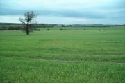 Farmland near Eakring