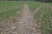 Footpath to Kidmore End
