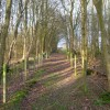 Vanguard Way, Kiln Wood
