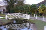 Bridge by Frensham Pond Hotel
