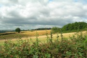 View from path between High Lane & Mosborough