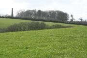Thelbridge: north from Mill Barton