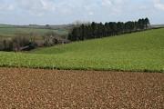 Towards Penhawger Farm