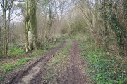 Track into Spar Coppice from Hinton Lane