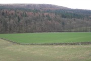 Farmland, bend in the River Esk & Langfauld Wood