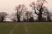 Arable Farm Land