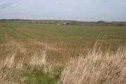 Farmland near Stoke Tunnel Farm