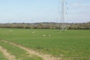 Farmland in the Stour Valley