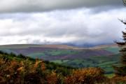 View near Mynydd Y Gaer