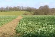 Bridleway to Woodside Farm