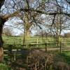 Oak by Brook Farm track
