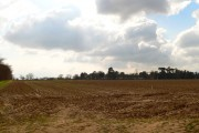 Ploughed field, distant treeline and big sky