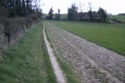Footpath approaching Medstead