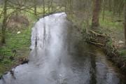 River Lee near Woolmer's Park