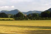 Lorton Vale Farmland