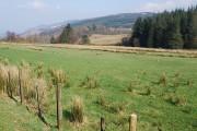 Farmland near Otter Ferry